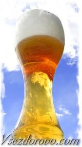 нефильтрованное пива - источник полезных пивных дрожжей