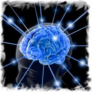 мозг рисунок