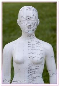медицинский манекен для иглоукалывания