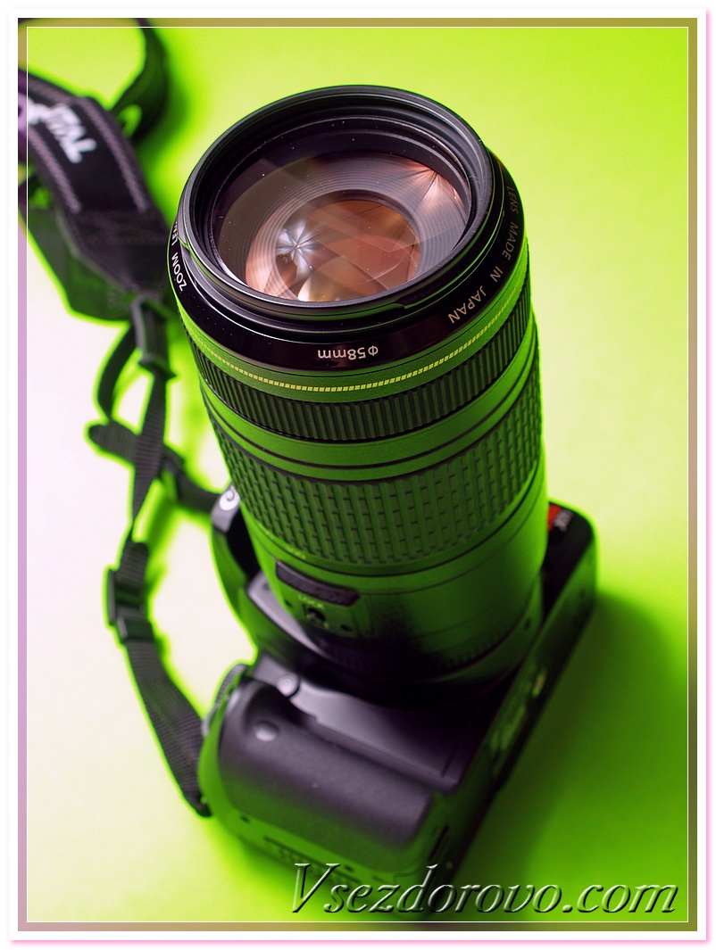 A digital SLR with a telephoto zoom lens