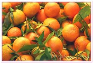 мандарин танжерин