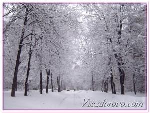 зима снег красиво