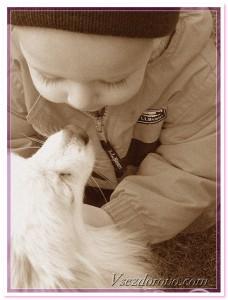 малыш и щенок фото