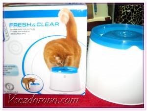 поильные фонтанчики для кошек