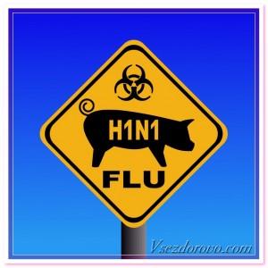 к нам вернулся свиной грипп