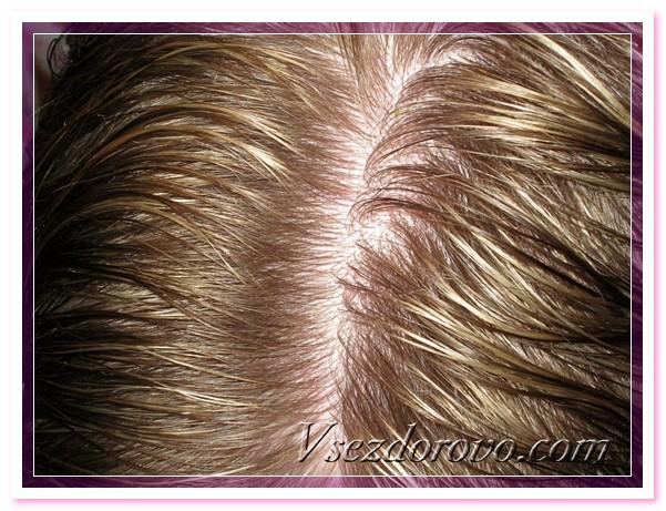 травяной порошок отлично промывает волосы