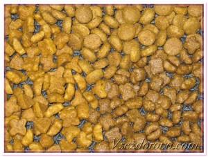 сухой корм для кошек премиум класса фото