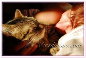 Женщина и кошка спят вместе фото