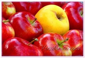 Красивые спелые яблоки фото