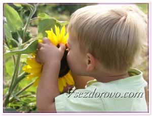 Маленький мальчик и цветок подсолнуха фото