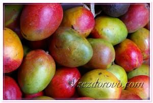 Спелые плоды манго фото