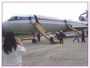 Эвакуация пассажиров с самолета фото