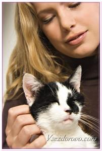 Девушка с любимой кошкой фото