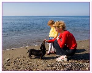 Женщина с ребенком и собакой на море