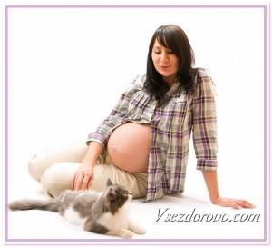 Беременная женщина и кошка фото