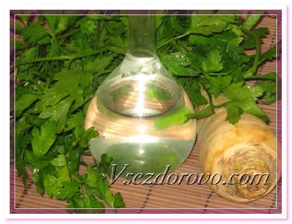 Полученный гидролат представляет собой прозрачную жидкость с сильным ароматом петрушки, с насыщенным специфическим вкусом