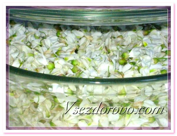 Сырье для гидролата - цветки акации