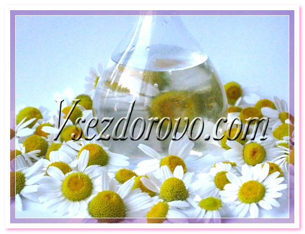 Гидролат ромашки фото
