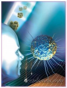 Бактерии в окружающей среде