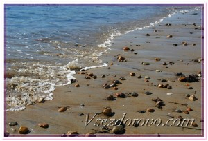 Морской отлив фото