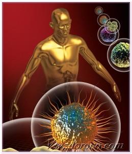 3d человек и бактерии