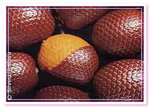 плоды пальмы бурити
