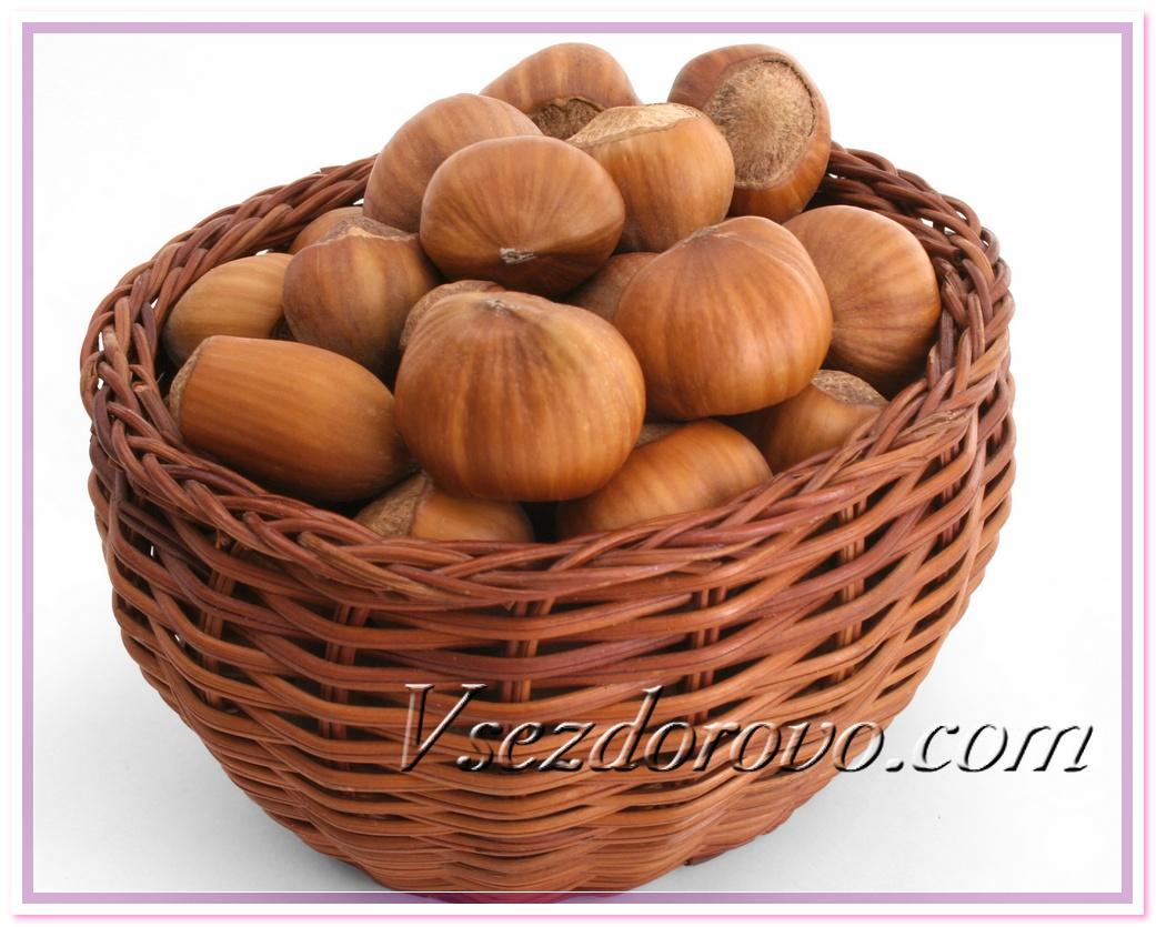 Лесные орехи фото