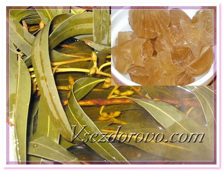 Заранее готовим насыщенный отвар листьев эвкалипта, остужаем, процеживаем и разливаем в формочки для льда.