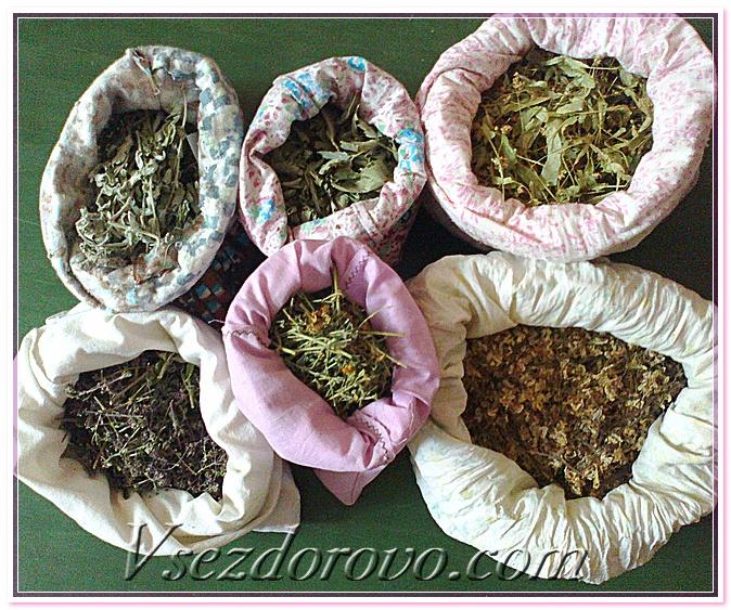 как выбрать травы для мацерации