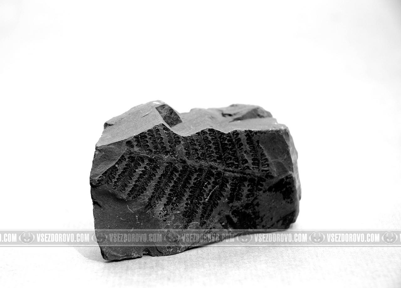 Как похудеть при помощи угля