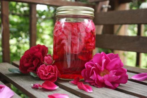 Законсервировать живые цветы купить цветы в железнодорожном дешево