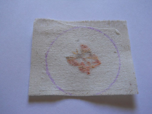 Мастер-класс: брошка в форме пинкипа своими руками