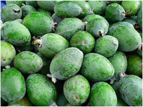 Плоды под название фейхоа