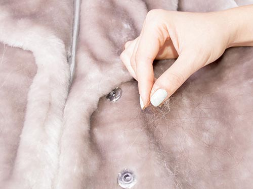 Как почистит мех песца в домашних условиях