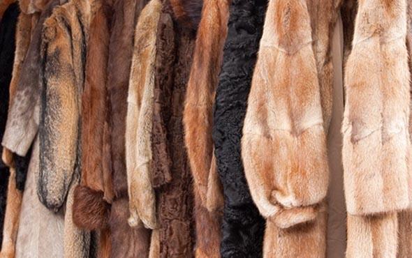 Чистим шубу в домашних условиях: как чистить норковую шубу