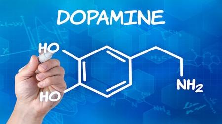 Дофамин: показания к применению, противопоказания и побочные действия