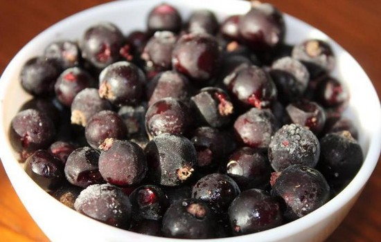 Черная смородина на зиму  – рецепты без варки, с сахаром и без, пятиминутка, компот