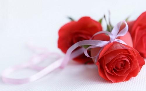 `Оригинальные и прикольные поздравления с 8 марта женщинам