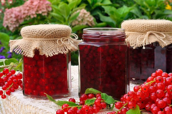 Красная смородина - рецепты на зиму с сахаром без варки