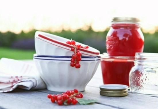 Красная смородина на зиму – желе, варенье, джем. Рецепты заготовок красной смородины для зимы: с сахаром, без варки