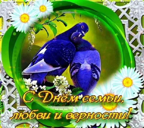 Ортез пальцев руки ORTEX 022 купить в Москве 71