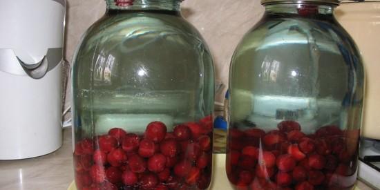 Вишня — компот на зиму консервированный, с косточками. Лучшие рецепты компота из вишни на зиму – с фото