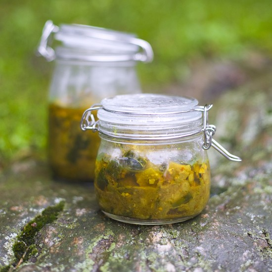баклажаны на зиму как грибы рецепты приготовления без стерилизации фото
