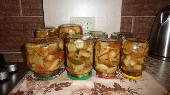 Как правильно мариновать грибы в домашних условиях на зиму в банках с уксусом, луком, без стерилизации. Рецепт маринования дунек и белых