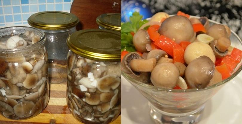 Рецепт салата с черносливом и грецким орехом слоями