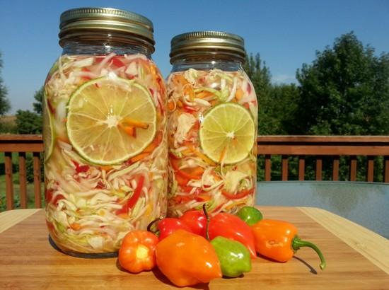 Простые и вкусные рецепты из капусты на зиму в банках без стерилизации и уксуса, с аспирином. Солянка на зиму из капусты