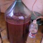 Как в домашних условиях сделать вино из винограда лидия - Спец техника