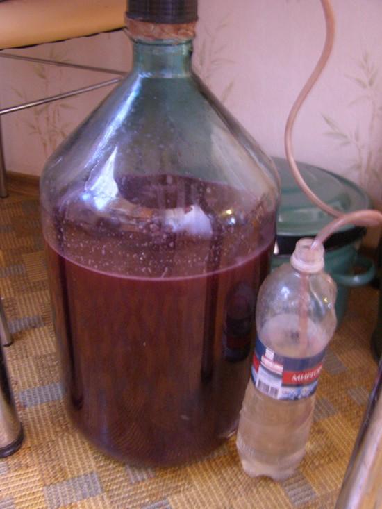 как готовить вино из винограда
