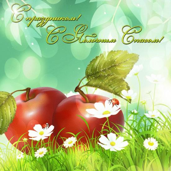 Яблочный Спас 2016 (Преображение Господне) - история праздника, традиции, приметы, молитвы. Поздравления с Яблочным Спасом — прикольные, короткие, в стихах и прозе