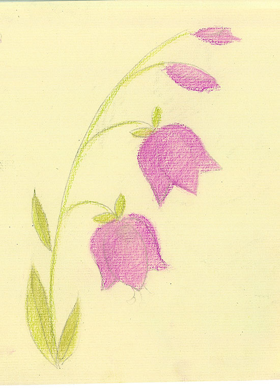 Цветок поэтапно для начинающих